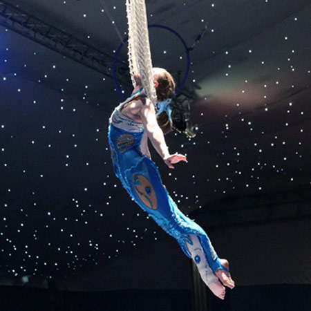Book AERIALISTS & ACROBATS