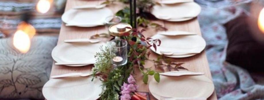 Party Planning: Reusable vs Disposable Plates, Part 2