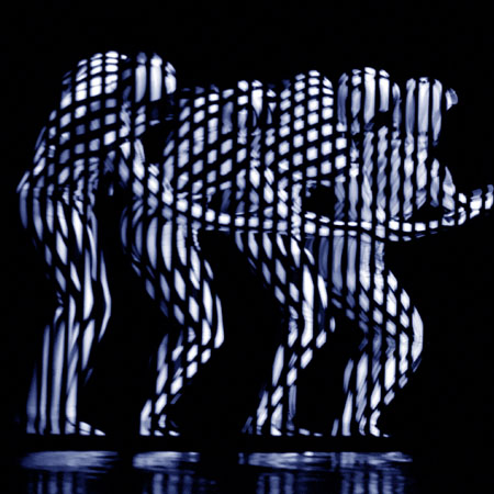 img_Optical-Illusion-Visual-Zebra-Main.jpg